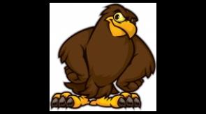 hawk_mascot_1.jpg