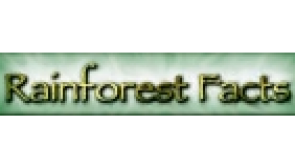 Rain Forest Facts