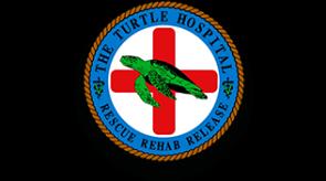Turtle_Hospital.png